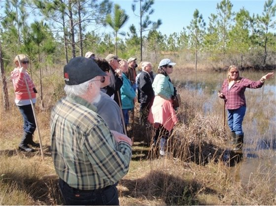 Chris Verlinde teaching a freshwater wetlands class to about a dozen participants