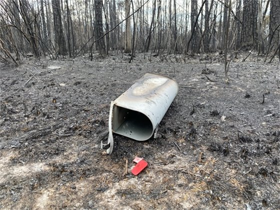 Fire-scorched mailbox from Five Mile Swamp Fire