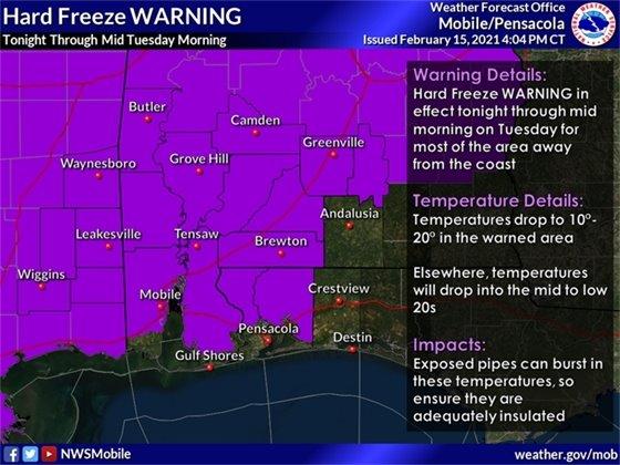Hard freeze graphic