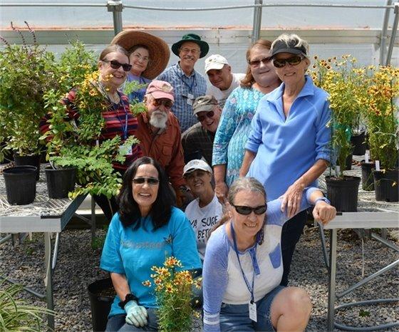Master gardener volunteers in the extension greenhouse