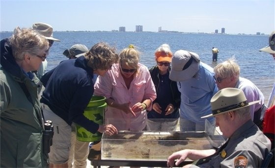 Group of people at the beach overlooking a habitat display