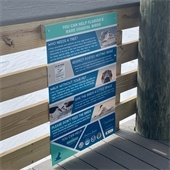 Rare coastal birds sign