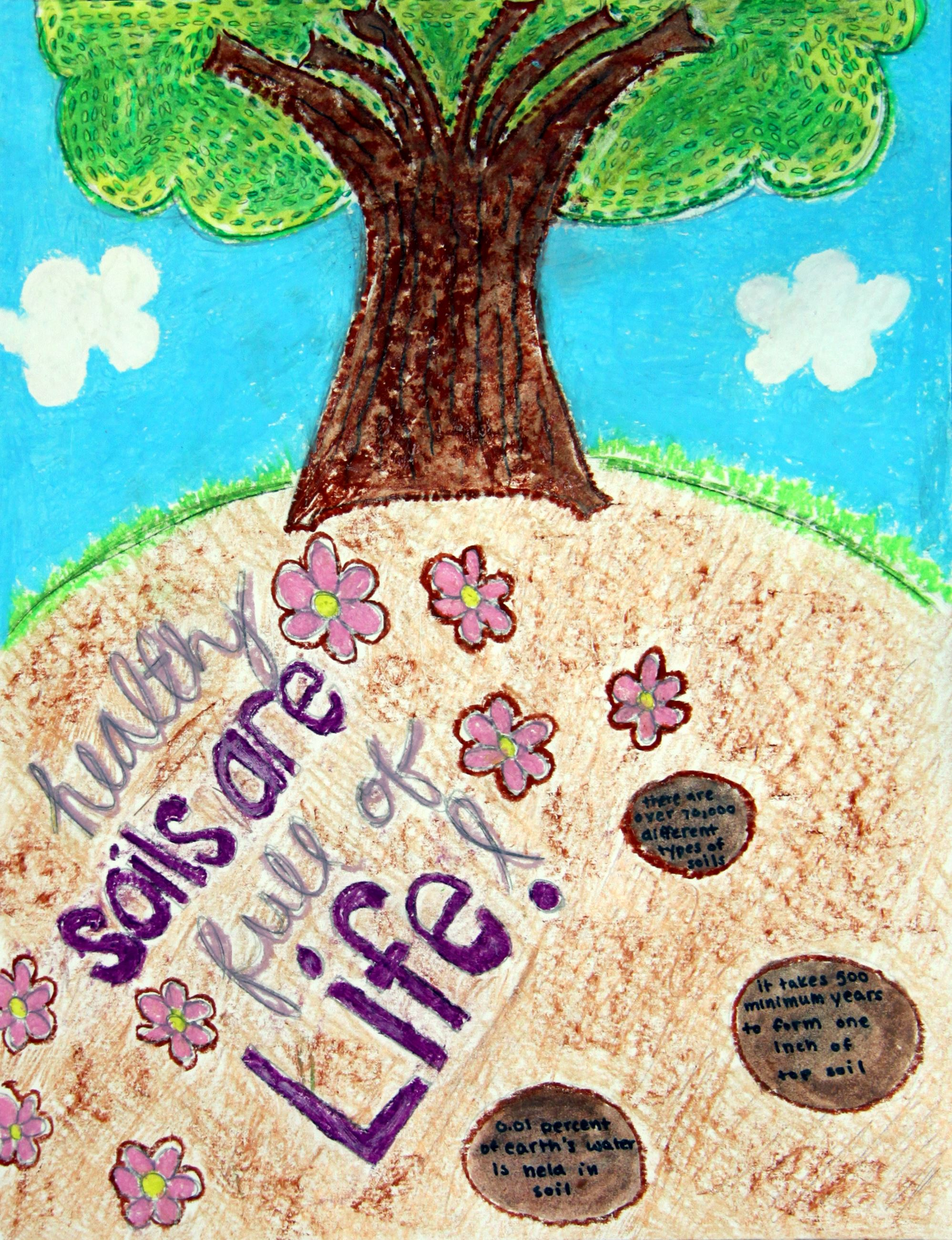 Grade 7 to 9, Third Place Winner: Hailey Ward
