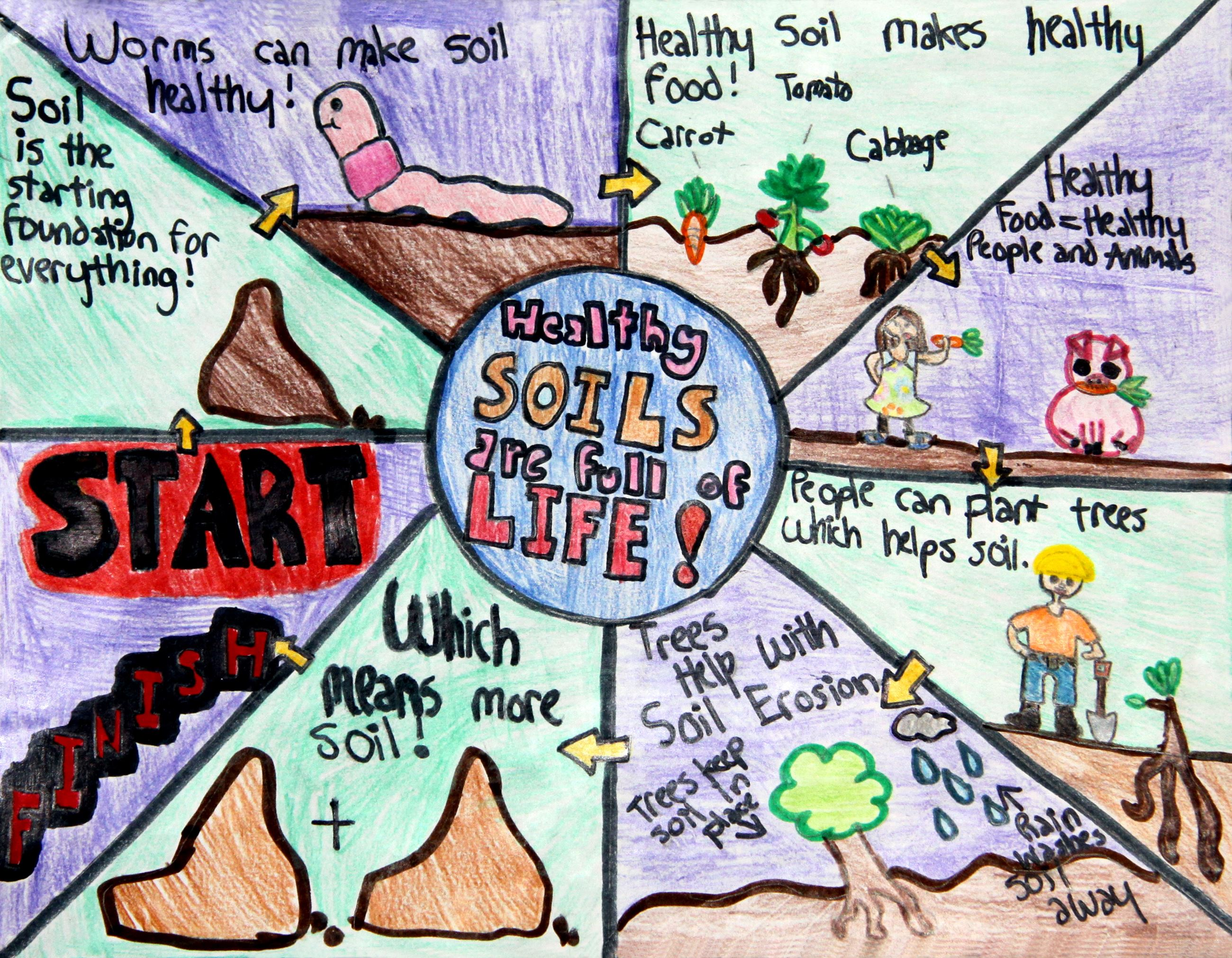 Grade 4 to 6, First Place Winner: Haley Hernandez