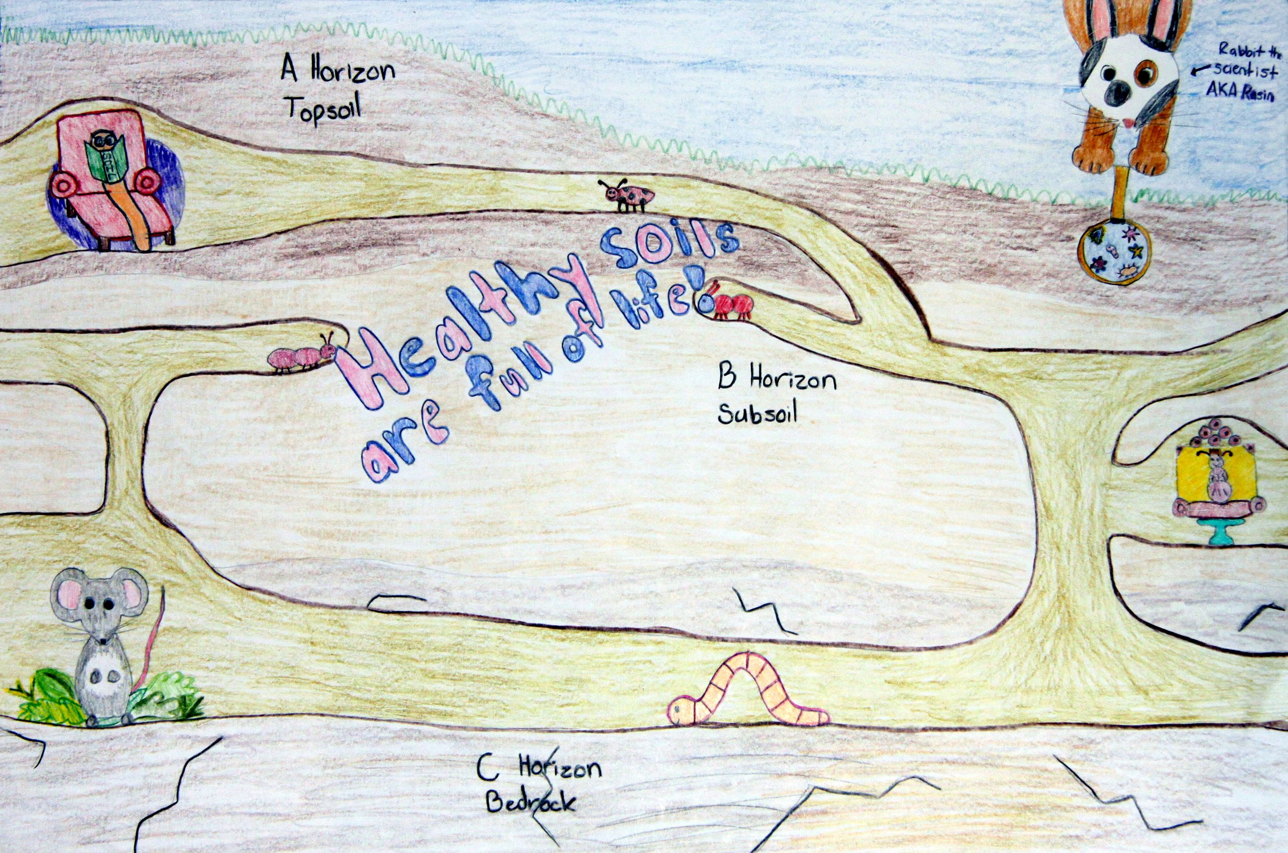 Grade 4 to 6, Third Place Winner: Amie Birk