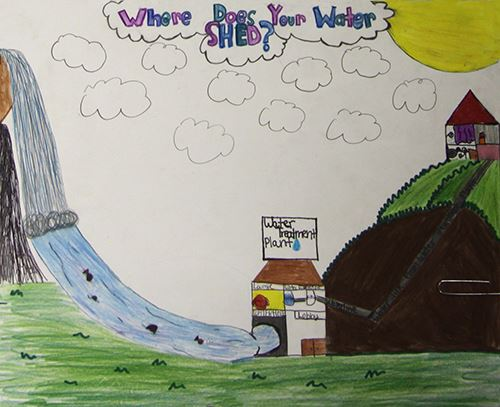 Grade 4 to 6, Third Place Winner: Ana DeCesare