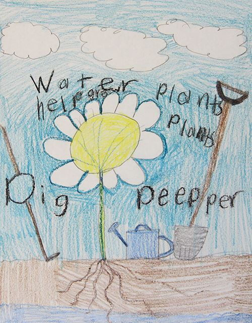Grade 2 to 3, Third Place Winner: Ryan Andrews