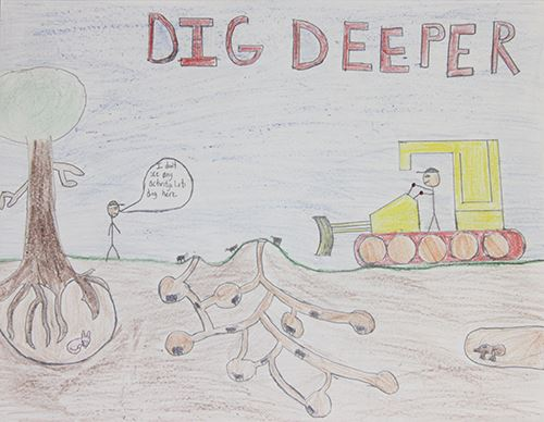 Grade 4 to 6, Third Place Winner: Luke Seifert