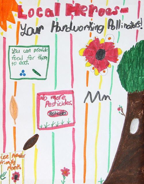 Grade 2 to 3, First Place Winner: Caroline Telford