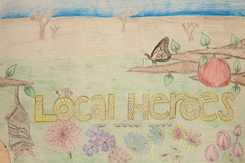 Grade 7 to 9, Second Place Winner: Quinlyn Bray